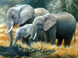 Sok kihalt állatfajról már keveset tudunk