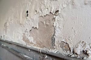 A páramentesítő szárítja a falakat